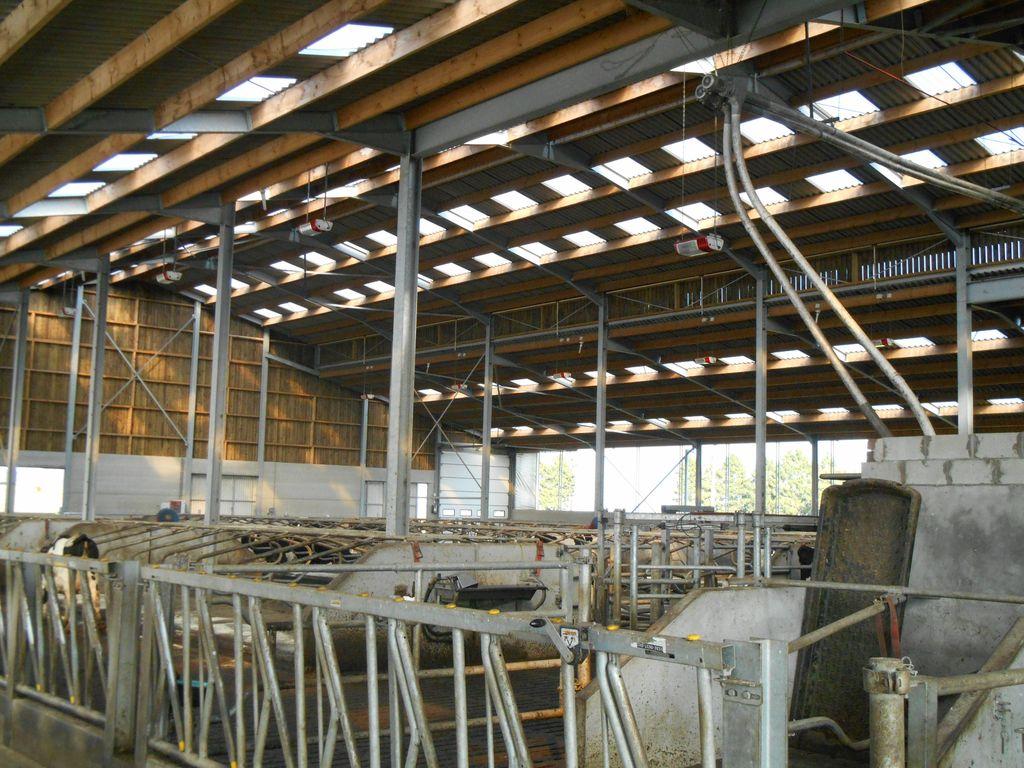 14.Joubieval-etable-vaches-laitieres01_1024