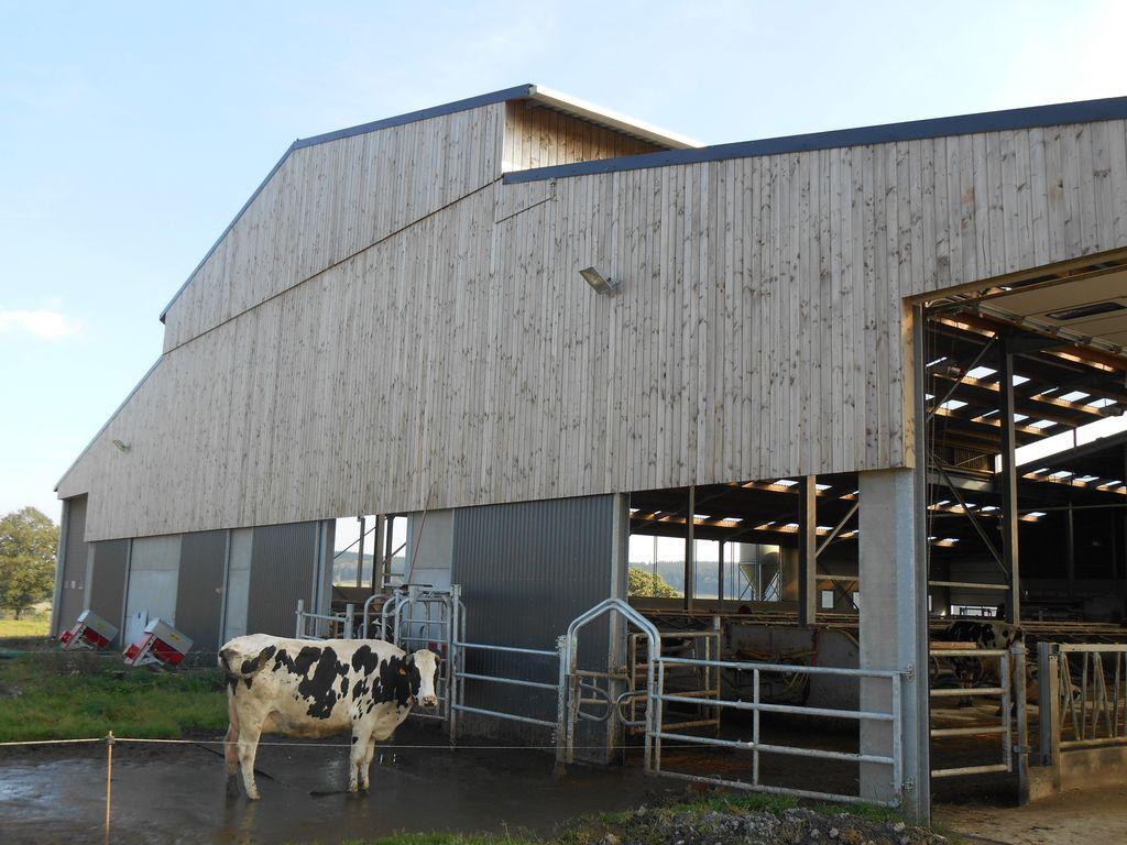 14.Joubieval-etable-vaches-laitieres04_1024