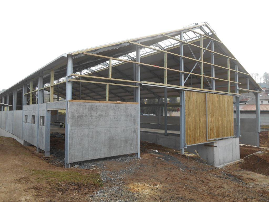 38.Bettborn-etable-vaches-laitieres07_1024