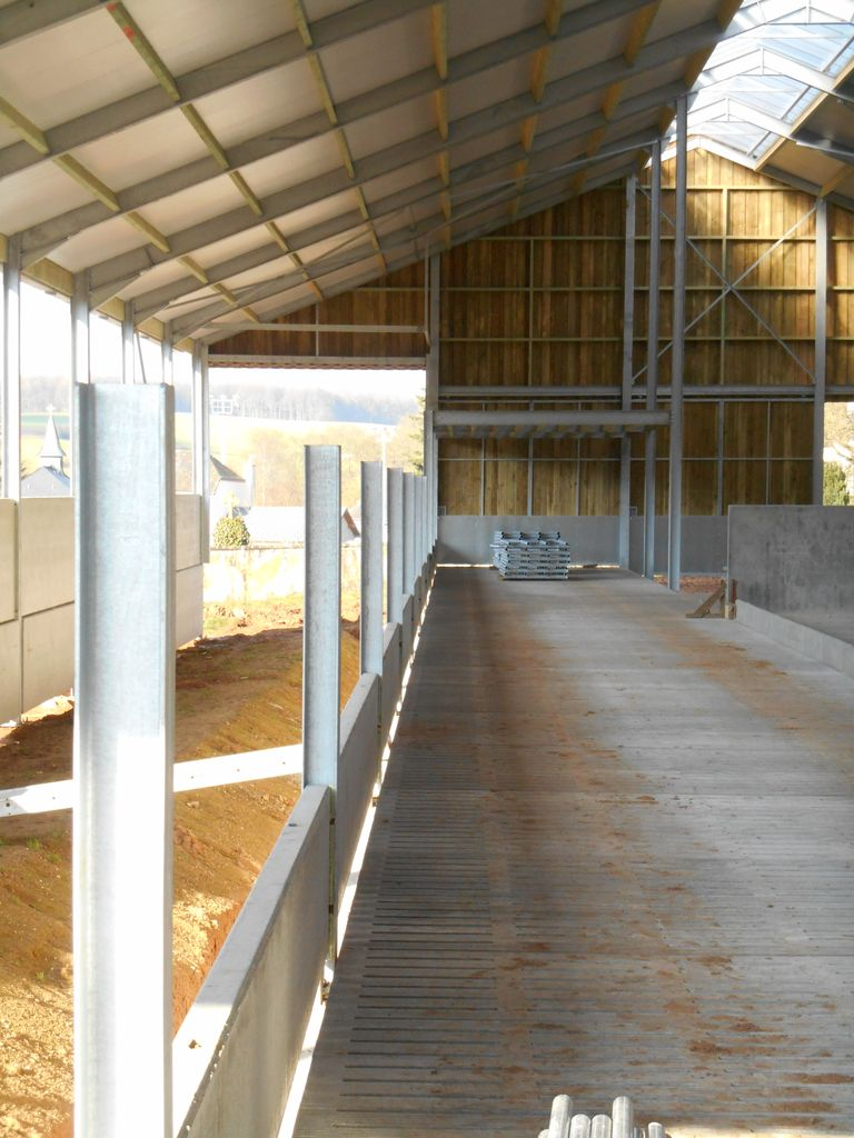38.Bettborn-etable-vaches-laitieres13_1024